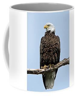 Observant Sentry Coffee Mug