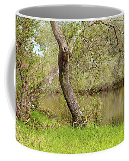 Coffee Mug featuring the photograph Oceano Lagoon by Art Block Collections
