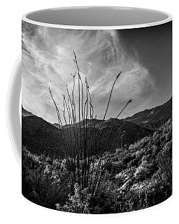 Ocotillo At Sunrise Coffee Mug
