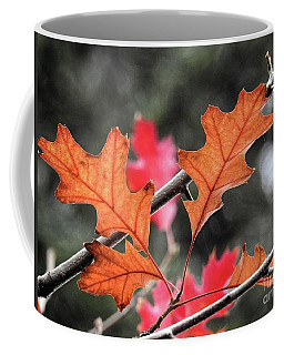 Coffee Mug featuring the photograph October by Peggy Hughes