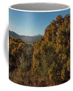 October Ribbonwood Coffee Mug