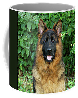 Coffee Mug featuring the photograph Oden by Sandy Keeton