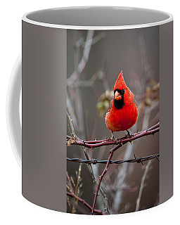 Of Barbs And Thorns Coffee Mug