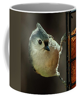 Coffee Mug featuring the photograph Of Course I'm Cute by Jim Moore