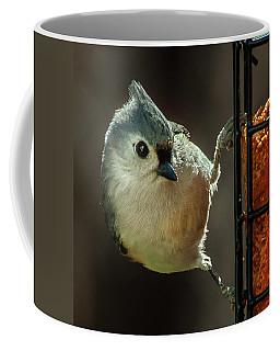 Of Course I'm Cute Coffee Mug