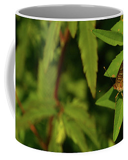 Offset Image Of A Brown Butterfly Coffee Mug