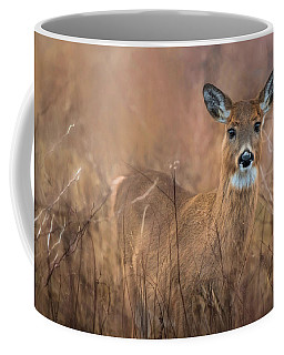 Coffee Mug featuring the photograph Oh Deer by Robin-Lee Vieira