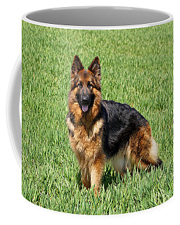 Ohana In Field Coffee Mug