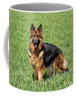 Ohana In Field Coffee Mug by Sandy Keeton