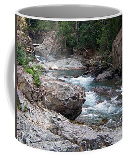 Coffee Mug featuring the photograph Ohanapacosh River by Charles Robinson