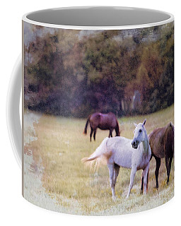 Ok Horse Ranch_1c Coffee Mug