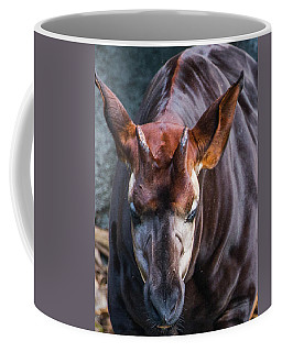 Okapia Coffee Mug
