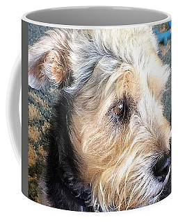 Old Dogs Rock Coffee Mug