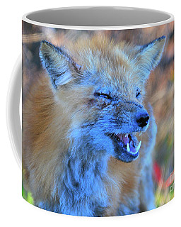 Coffee Mug featuring the photograph Old Fox by Debbie Stahre