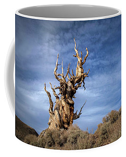 Coffee Mug featuring the photograph Old Friend by Sean Foster
