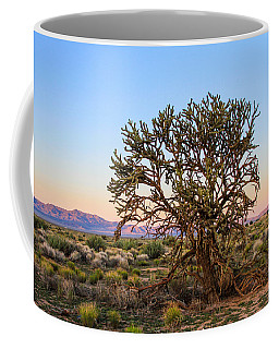 Old Growth Cholla Cactus View 2 Coffee Mug