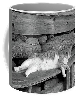 Coffee Mug featuring the photograph Old Mill Cat by Sandi OReilly