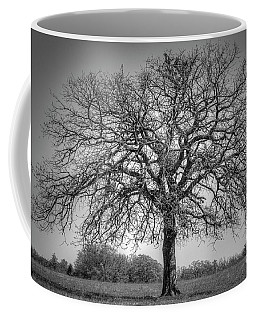 Old Oak Coffee Mug