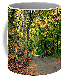 Coffee Mug featuring the photograph Old Plank Road by Cricket Hackmann