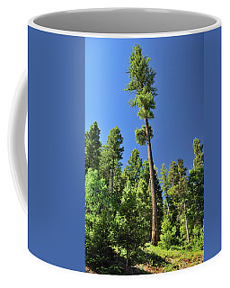 Old Ponderosa Coffee Mug