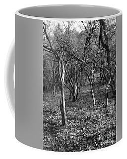 Old Stories Old Bones Coffee Mug by Marie Neder