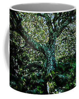 Old Tree As I Saw It Coffee Mug