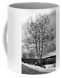 Old White Birch Coffee Mug by Betty Pauwels