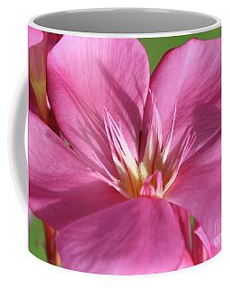 Oleander Maresciallo Graziani 3 Coffee Mug