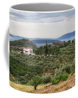 Coffee Mug featuring the photograph Olive Grove Panorama by Shirley Mitchell
