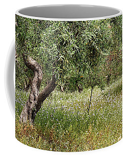 Olive Groves Coffee Mug by Shirley Mitchell