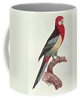Omnicolored Parakeet Coffee Mug