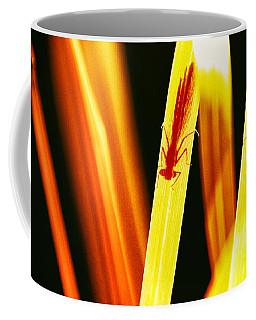 Coffee Mug featuring the photograph On Air 4 by Jaroslav Buna