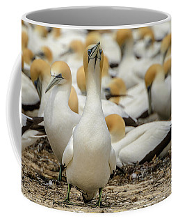Coffee Mug featuring the photograph On Guard by Werner Padarin