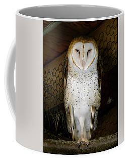 On One Leg Coffee Mug