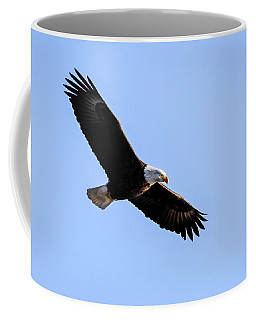 Coffee Mug featuring the photograph On Patrol by Ray Congrove