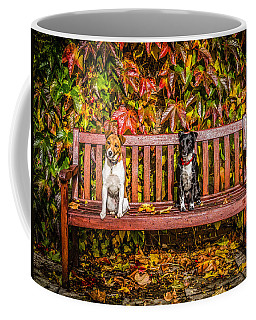 Coffee Mug featuring the photograph On The Bench by Nick Bywater