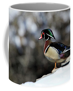 On The Brink Coffee Mug by Gary Hall