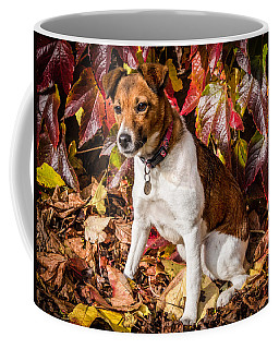 Coffee Mug featuring the photograph On The Leaves by Nick Bywater