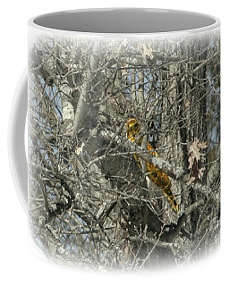 Coffee Mug featuring the photograph On The Lookout by Barbara S Nickerson