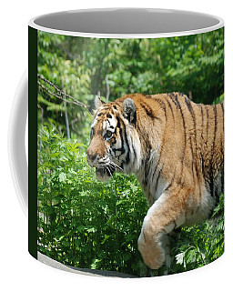 Coffee Mug featuring the photograph On The Prowl by Richard Bryce and Family