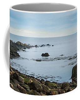 Coffee Mug featuring the photograph On The Rocks by Robin-Lee Vieira