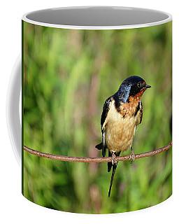On The Wire 3 Coffee Mug