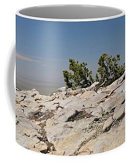 On Top Of Sandia Mountain Coffee Mug