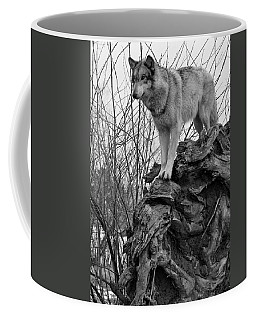 Coffee Mug featuring the photograph On Top by Shari Jardina