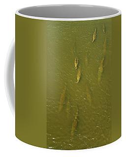 One Direction IIi Coffee Mug