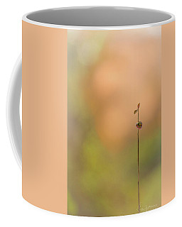 Coffee Mug featuring the photograph oNe by Gene Garnace