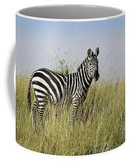 One Handsome Zebra Coffee Mug