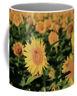 Coffee Mug featuring the photograph One In A Million Sunflowers by Chris Berry