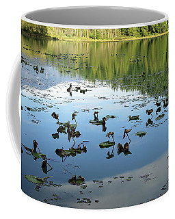 One Mile Lake Reflections 1 Coffee Mug by Walter Fahmy
