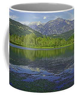 One Mile Lake Reflections 1a Coffee Mug by Walter Fahmy